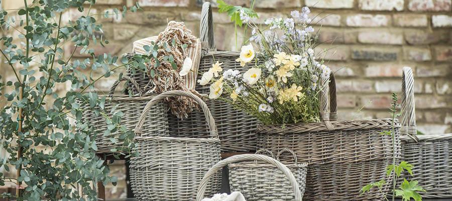 Planter & blomster