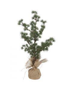 Cedertræ m/jutefod - 60 cm
