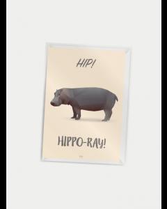 Citatplakat A7 - Hip Hippo-ray!