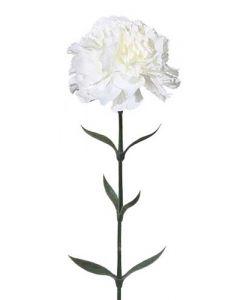 Nelike 67cm - Hvid