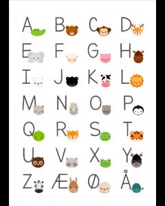 Plakat ABC Dyr